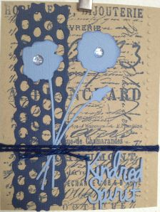 kraft plus blue cropped